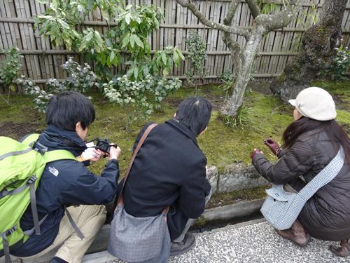 東慶寺にいながら、入口にとどまりひたすらメモをとり写真を撮り続ける集団…。あやしいですよね。実際。